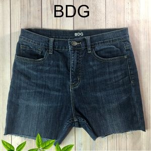 Urban Outfitters BDG Size 29 Shorts Denim
